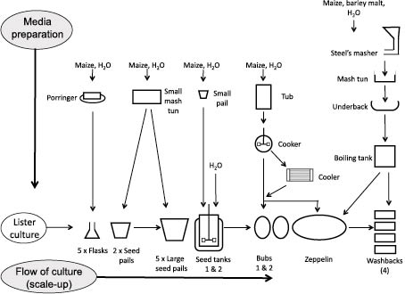 Acetone production process using Lister Institute culture